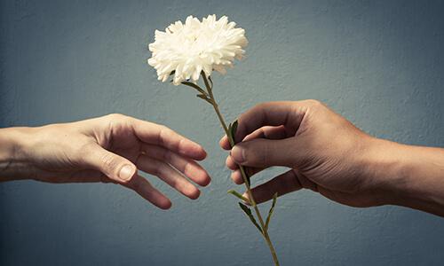 Fleur pour mort